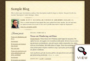 Scribe Blogger template by Todd Dominey