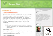 TicTac Blogger template by Dan Cederholm